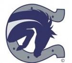 Boerne Champion Logo