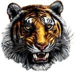 Dallas Lincoln Logo